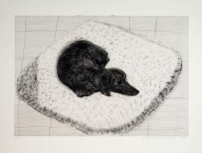 David Hockney, 'Dog Etching No. 1 from Dog Wall', 1998