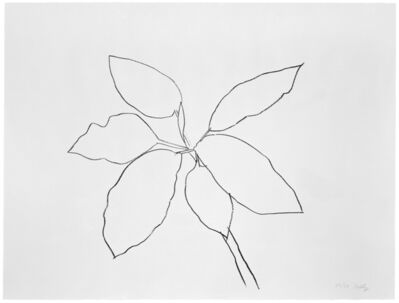 Ellsworth Kelly, 'St. Martin Tropical Plant', 1981