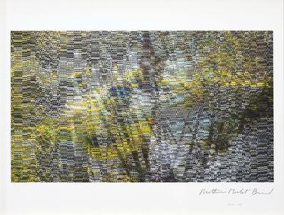 Mathieu Merlet Briand, '#Nature #29', 2019