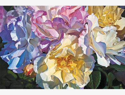 Paul Baldassini, 'Heirloom Alba Roses', 2018