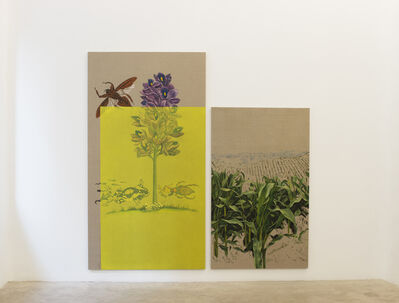 Gabriela Bettini, 'Glycine max II', 2019