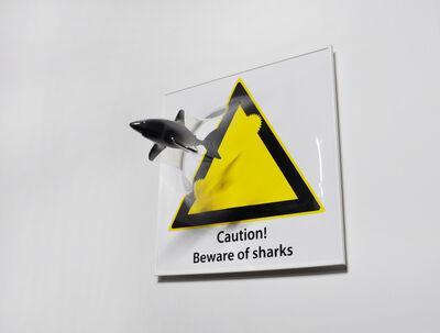 Yuki Matsueda, 'Beware of Sharks', 2016