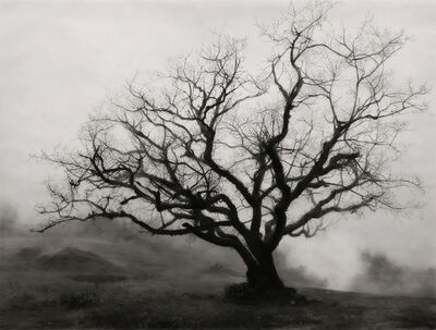 Robert Longo, 'Study of Foggy Tree', 2019