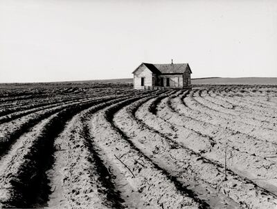 Dorothea Lange, 'Tractored Out, Childress County, TX', 1938