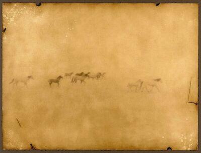 Jack Spencer, 'Horses, Badlands, South Dakota 10/10'