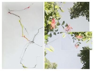 Sandi Haber Fifield, 'Untitled (LF16 #144)', 2016