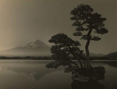 Yamamoto Masao, 'Bonsai #4017', 2019