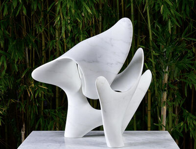 Richard Erdman, 'Cypraea', 2020