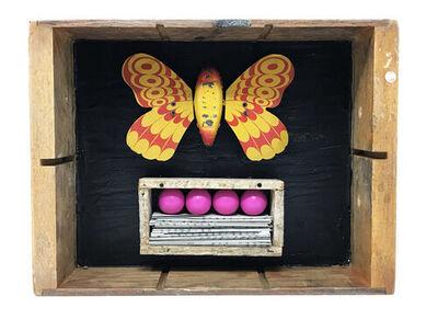Robin Howard, 'Butterfly Box 5', 2019