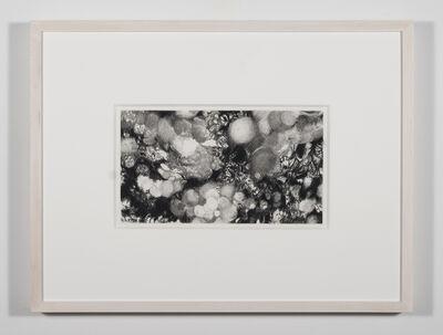 Nene Humphrey, 'Slowspin Frame 11:59:42', 2017