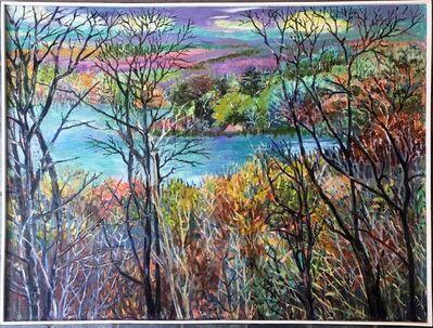 Thelma Appel, 'Strang Lake', 2010