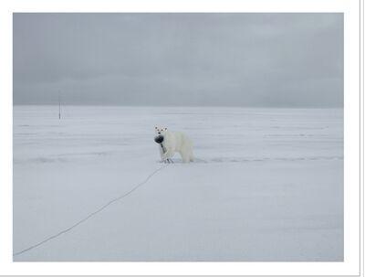 Andrea Galvani, 'A few invisible sculptures #9 and #10', 2012