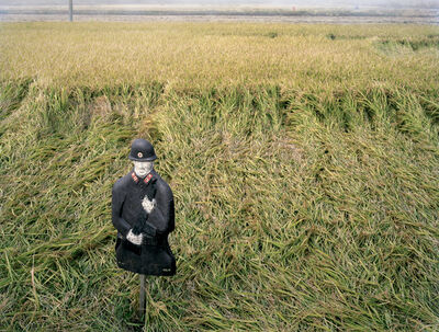 Yishay Garbasz, 'Rice field just before the harvest with target of North Korean soldier as a scarecrow, Baengnyeongdo', 2014