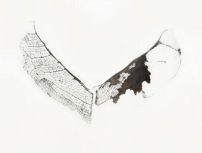 luisa sartori, 'Untitled #10', 2015
