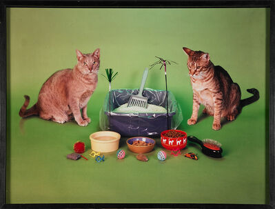 Neil Winokur, 'Cats', 1997