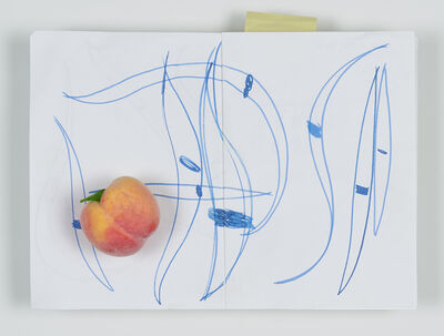Mike Pratt, 'Sketch Book with Peach', 2018