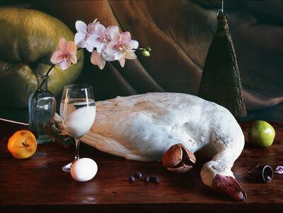 Vera Mercer, 'White Goose', 2009