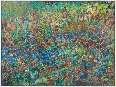 Thelma Appel, 'Forest Floor II', 1995