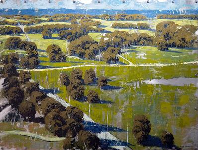 James Armstrong, 'Carolina Canopies '