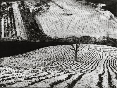 Mario Giacomelli, 'Paesaggio', 1968