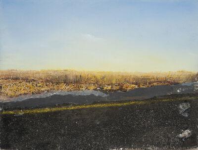 Shirley Wegner, 'Field', 2012
