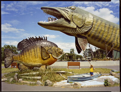 David Graham, 'Nat'l Freshwater Fishing Hall of Fame, Hayward, WI', 1984