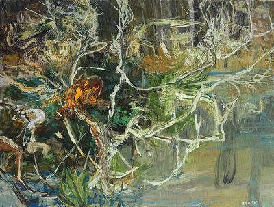 David Alexander, 'Myrtle Mess, Loleta', 2009