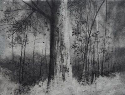 Marika Vicari, 'Memory of places', 2019