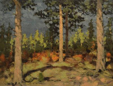 Vasily Leontevich Martynov, 'Nudesky forest', 1927