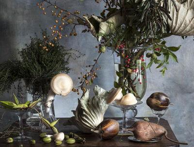 Vera Mercer, 'Mushrooms', 2013