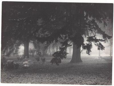 Ferenc Csík, 'Forest', ca. 1935