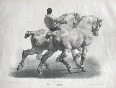 Rosa Bonheur, 'Cours D'Etudes D'Animaux, plate 12', 1859
