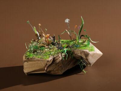 Nicolas Bernière, 'Small garden', 2019