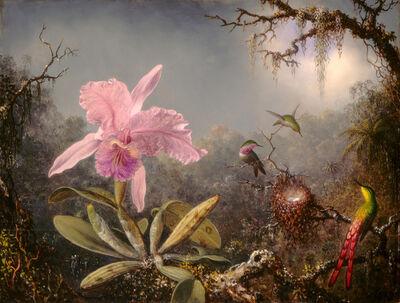 Martin Johnson Heade, 'Cattleya Orchid and Three Hummingbirds', 1871