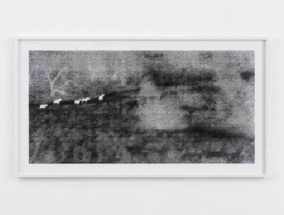 Barbara Ess, 'Wild Horses', 2010