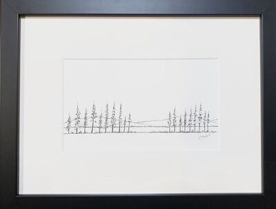 Tim Collom, '19 Pines', 2018