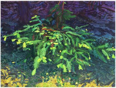 Michael Krueger, 'The Tree Forgives (The Night)', 2021