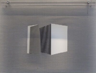 Amalia Giacomini, 'Frestas II', 2017
