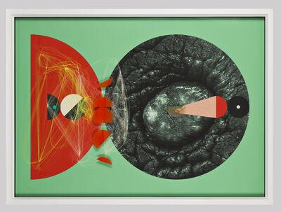 Aditya Pande, 'Half Life Form XII', 2012