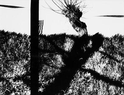 Mario Giacomelli, 'Le mie Marche', 1983