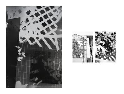 Bryan Graf, 'Shot/Reverse Shot, Studio Gardening at Night #3, July 26, 2020', 2020