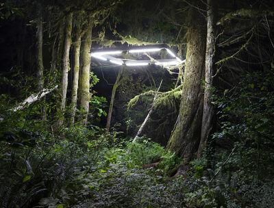 Chris Engman, 'Shelter', 2016
