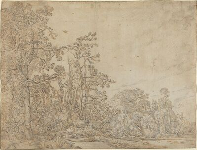 Willem Buytewech, 'Woodland Pond with a Fisherman', ca. 1617