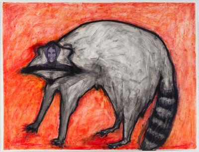 Karen Gibbons, 'Racoon', 2014