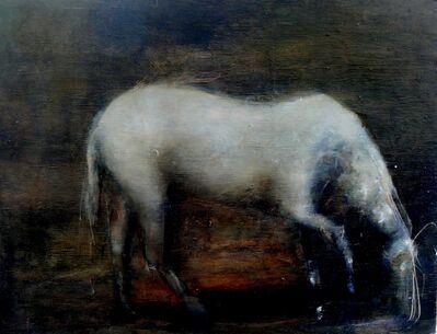 Fabio Giocondo, 'Cavallo (Horse)', 2019