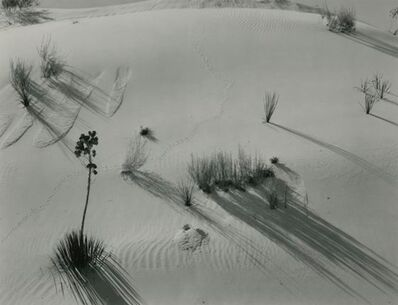 Brett Weston, 'Untitled (Dunes)', 1947
