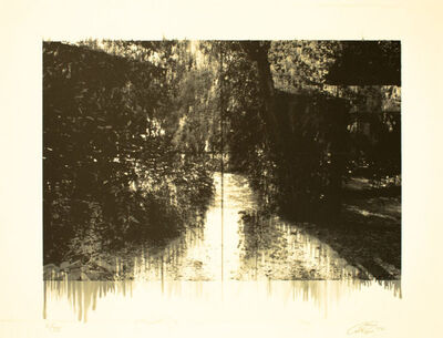 Annie Lapin, 'Ghost Wood Grove', 2010