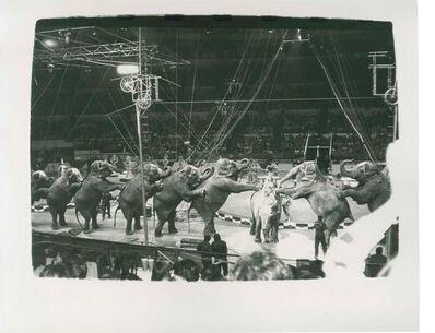 Andy Warhol, 'Circus (Elefants)', 1976-1987