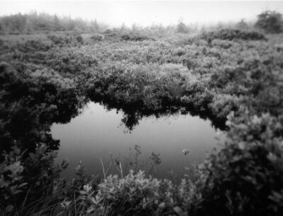 Scott Lapham, 'Bog, ME', 2003