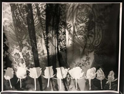 Mai Al Moataz, 'Nine Roses', 2017